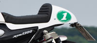 Tail kit XJR 1300 RP02, complete